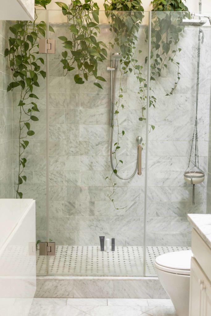 Photo d'une douche avec des plantes vertes
