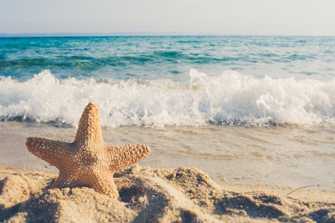 achat immobilier en bord de mer